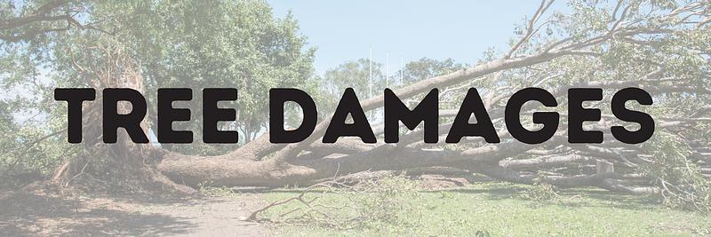 Tree Damages